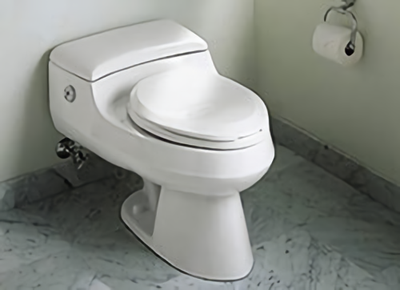 Care Amp Cleaning Toilets Amp Bidets Kohler