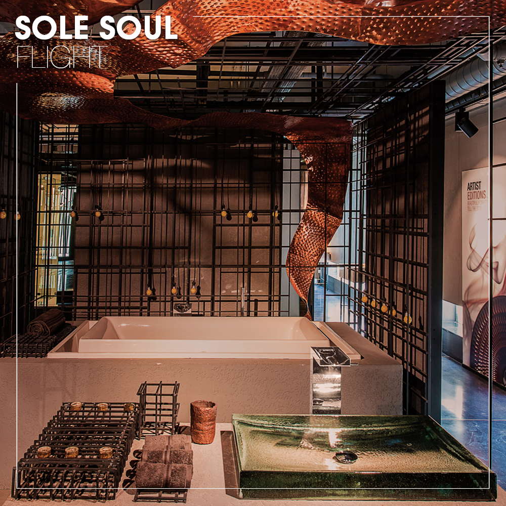 Sole Soul Flight